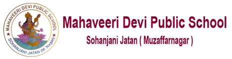 MD Public School Logo